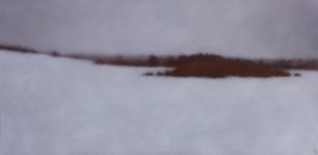 """White Field, 20""""x40"""", 2013."""