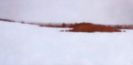 """White Field, 20""""x40""""."""