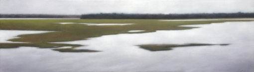 """""""Perceived Acuity"""", 18""""x52""""."""