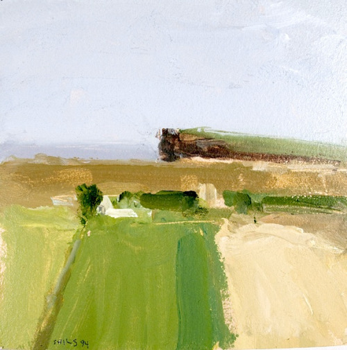 Stuart Shils, Fields near Ballycastle I,